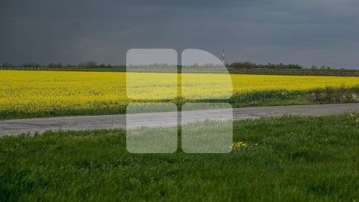 METEO 29 mai: Încă o zi cu vreme posomorâtă și ploioasă. Câte grade vor indica termometrele
