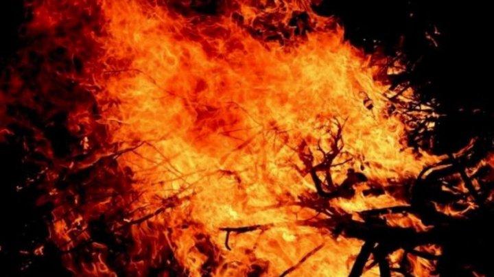 Incendii uriaşe în Siberia: 3 milioane de hectare sunt în flăcări