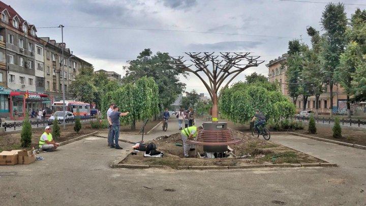 INEDIT! Copaci fotovoltaici, instalaţi pe străzile Capitalei (FOTOREPORT/VIDEO)