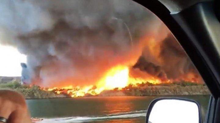 Tornadă de foc, filmată în timpul unui incendiu de vegetaţie. IMAGINILE AU FĂCUT ÎNCONJURUL INTERNETULUI
