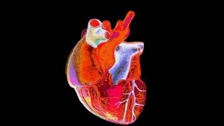 Cercetători americani au imprimat în 3D părţi funcţionale ale inimii
