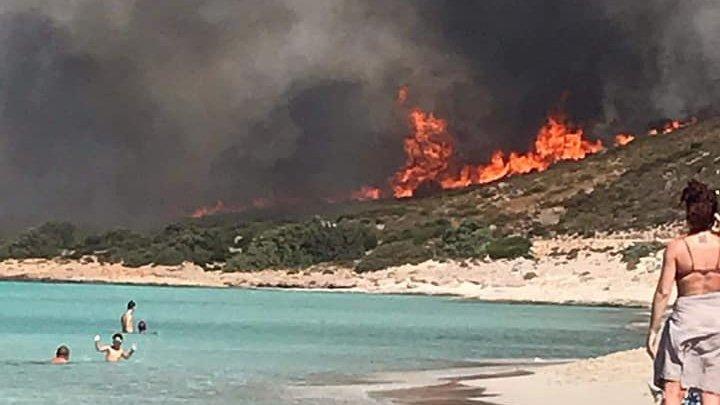 Peste 50 de incendii de pădure în Grecia produse de vânt şi caniculă (VIDEO)