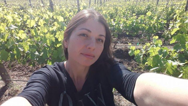 """Fostul secretar de stat la Ministerul Agriculturii, despre problema producătorilor de struguri: """"Cât mai rezistă agricultura Republicii Moldova?"""""""
