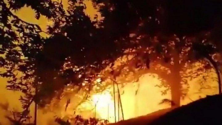 Incendiu uriaş pe Insulele Canare. Avertizare de călătorie pentru moldovenii care merg în acea regiune