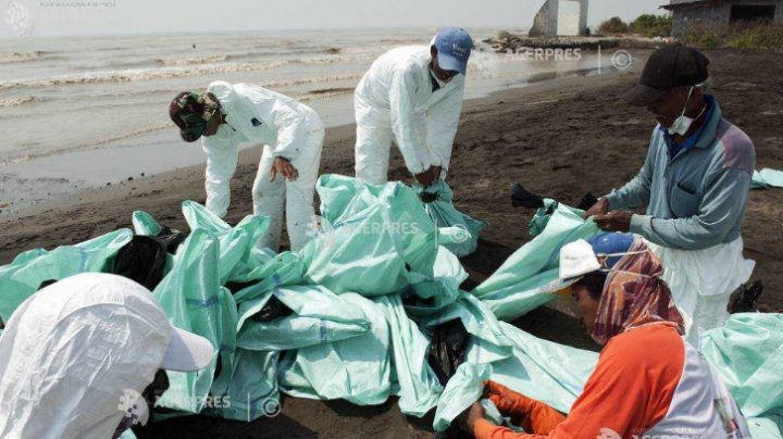 Zeci de mii de indonezieni au participat pe durata weekendului trecut la o operaţiune de curăţare a plajelor