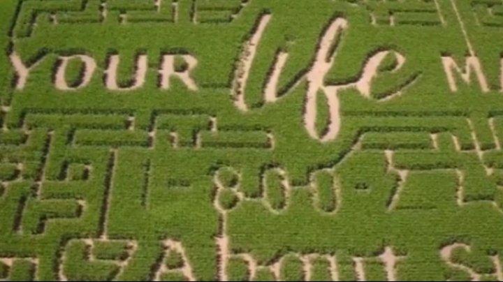Un fermier din Wisconsin a creat un labirint în lanul de porumb