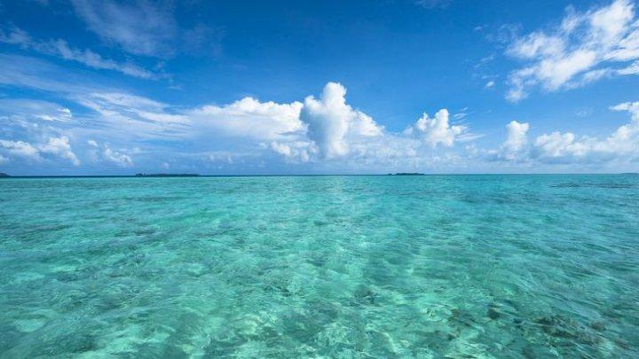 AVERTISMENTUL ONU: Oceanele pe cale să devină cei mai mari duşmani ai omenirii