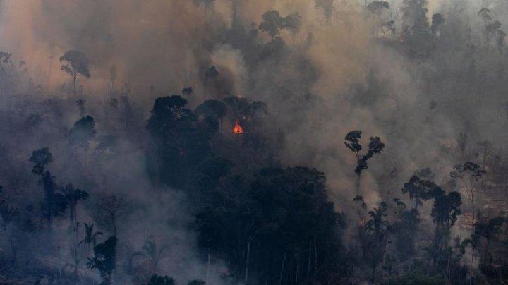 Criza de oxigen a planetei se adânceşte: Incendiile din Brazilia se extind în țările vecine (VIDEO)
