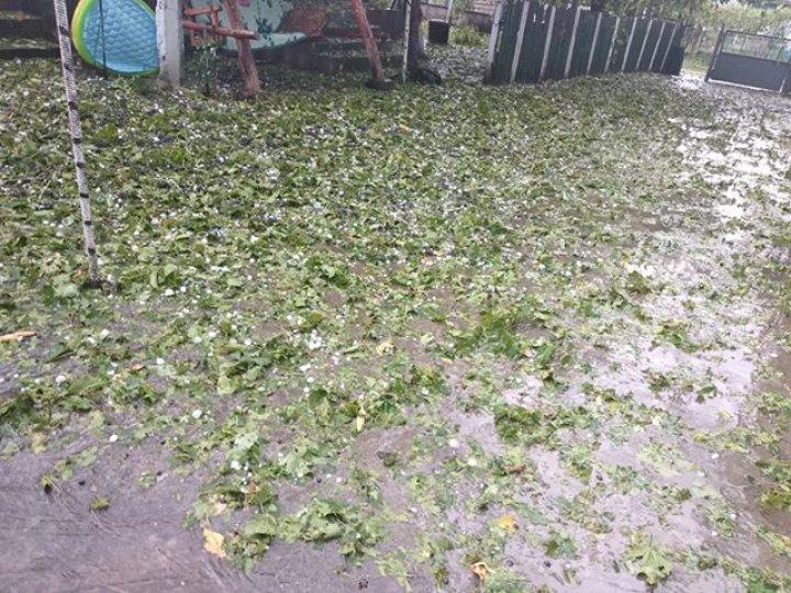 PRĂPĂD la Glodeni. O ploaie cu grindină a distrus totul în satul Camenca (IMAGINI SUMBRE)