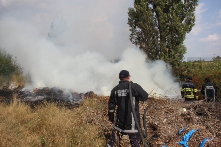 Incendiu de vegetație în sectorul Râșcani al Capitalei. Pompierii, la fața locului (FOTO)