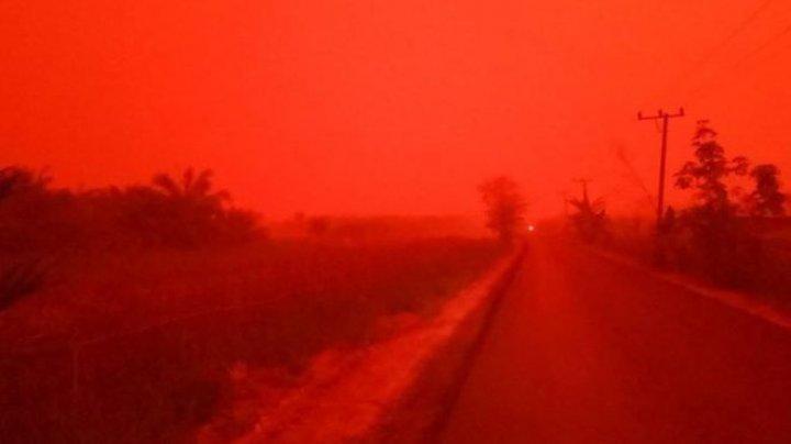 Scene apocaliptice în Indonezia. Cer roşu ca sângele din cauza incendiilor de pădure