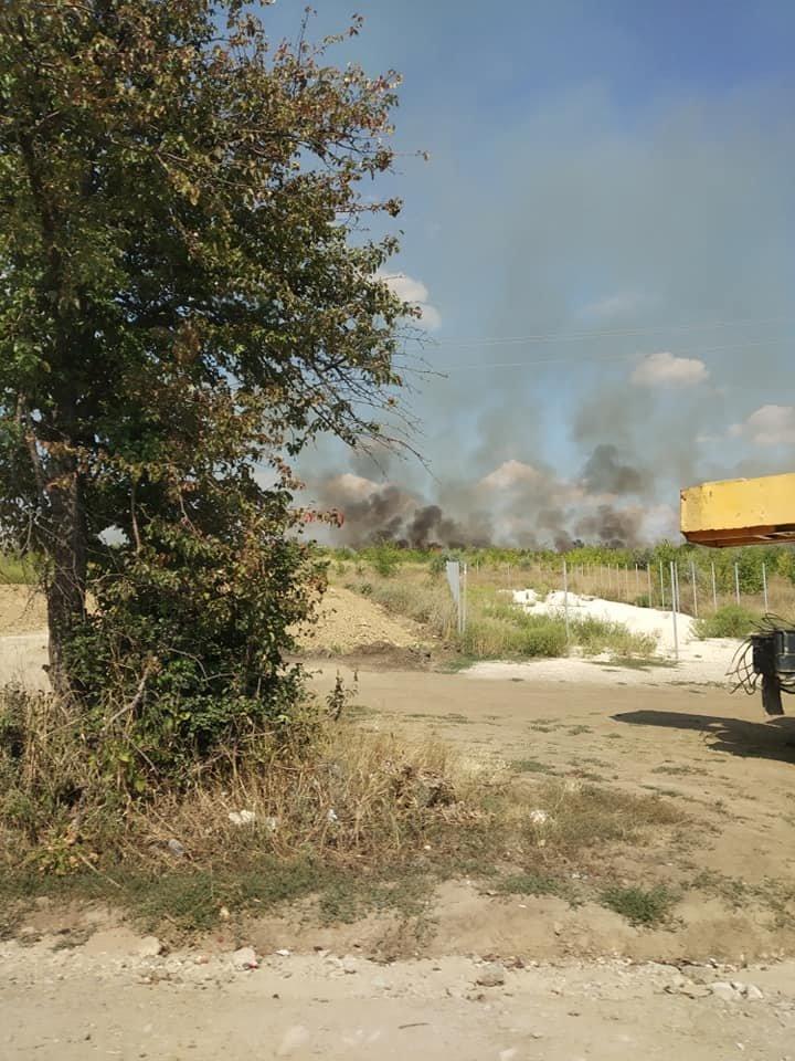 INCENDIU puternic la Buiucani. Un câmp, mistuit de flăcări (VIDEO/FOTO)