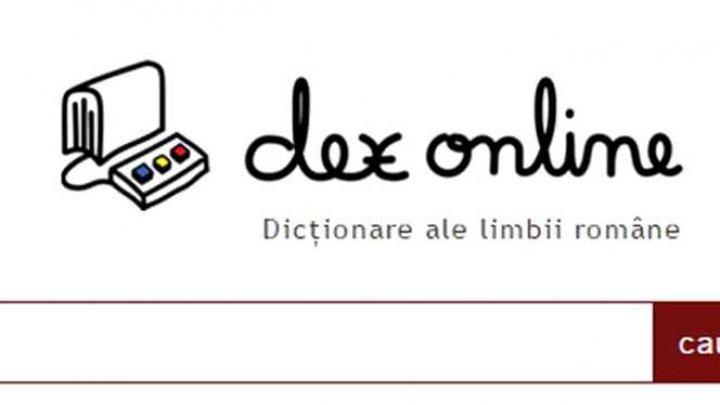 DEX online este în grevă. Motivul pentru care site-ul nu funcţionează