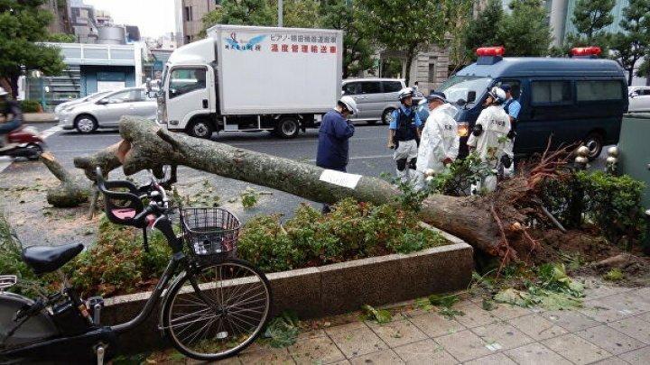 Japonia: Aproximativ 430.000 de gospodării din zona Tokyo, fără energie electrică după taifunul Faxai