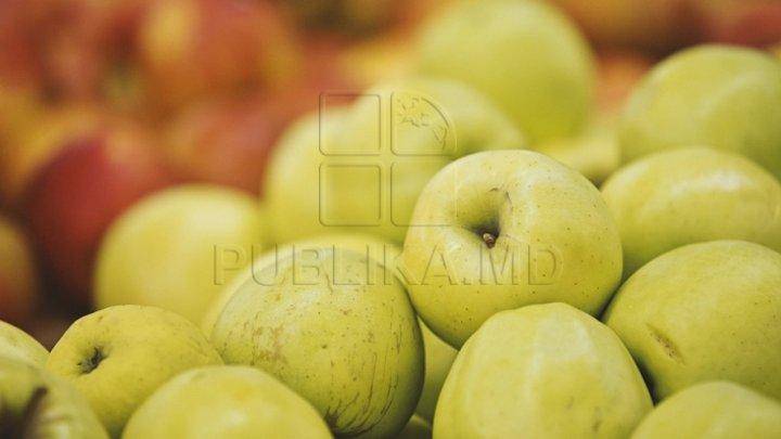 În ce ţări am exportat cele mai multe fructe şi legume