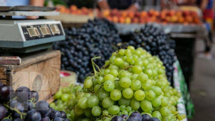 AVERTISMENTUL făcut de reprezentanţii CNPIEC privind legumele şi fructele din pieţele din Capitală: Situația este catastrofală