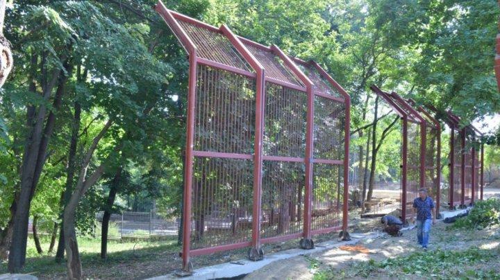 O nouă casă pentru urșii bruni de la Grădina Zoologică din Capitală. Când va fi gata voliera (FOTO)