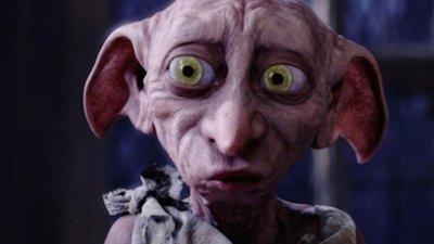 Dobby, spiridușul lui Harry Potter a fost surprins de camerele de supraveghere din curtea unei case din SUA (VIDEO)