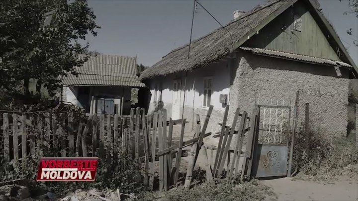 """""""Grădina morții"""" de la Purcari. Cine este individul care culegea vieți de oameni, astăzi la Vorbește Moldova"""