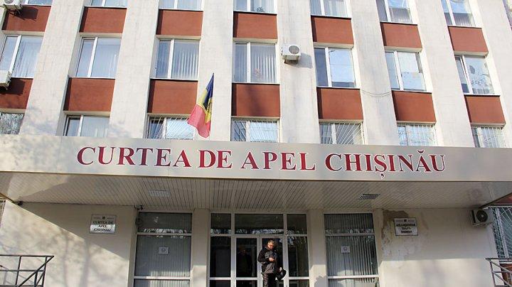 Curtea de Apel a decis: Năstase trebuie să scoată imaginea lui Ștefan cel Mare de pe pliantele electorale (FOTO)