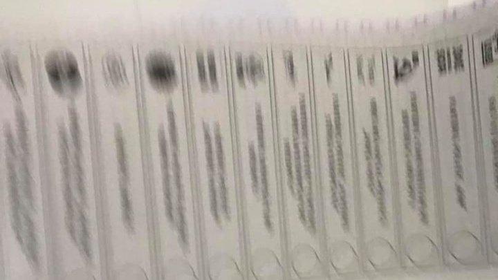 #ALEGEPUBLIKA. Cod Galben de ceață electorală pe buletinul de vot al lui Mihai Ghimpu (FOTO)