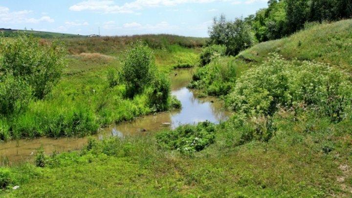 GEST DEMN DE URMAT! Zeci de elevi din Costeşti au curăţat albia râului Botna