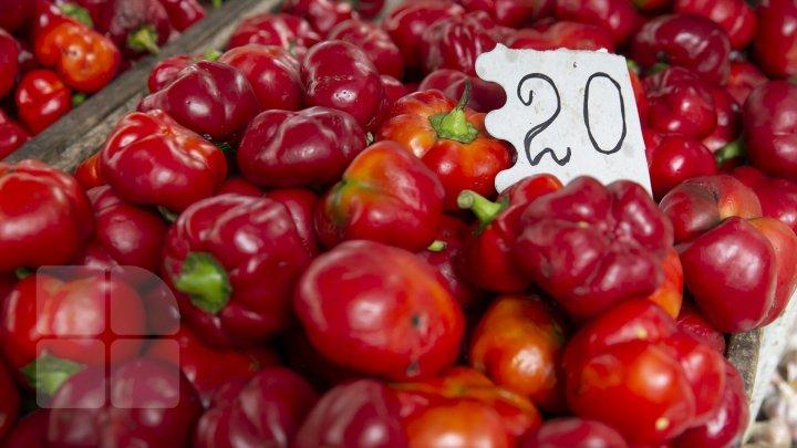 COȘUL PUBLIKA.MD În plină toamnă, legumele s-au scumpit. Prețul celor mai importante produse în piețele din Capitală