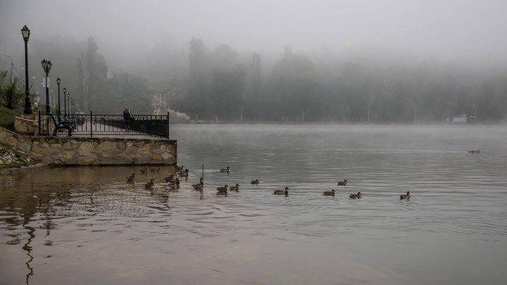 ATENŢIE! Meteorologii au prelungit avertizarea de Cod Galben de ceaţă