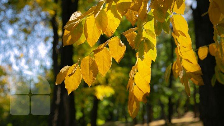 METEO 21 octombrie: Cer variabil în toată ţara. Câte grade vor indica termometrele
