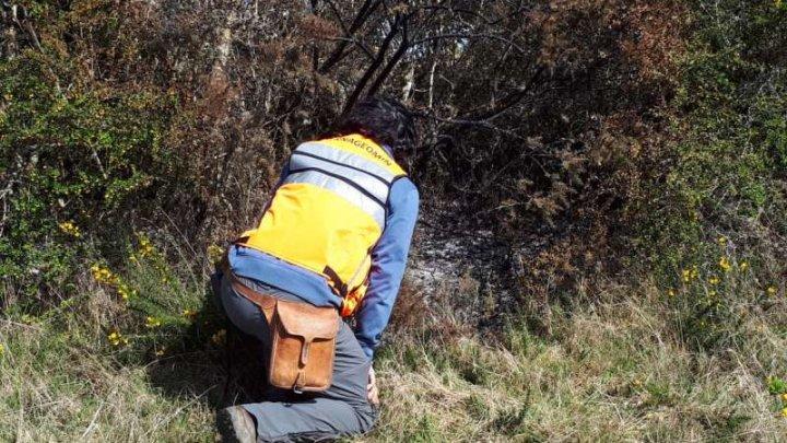 Chile: Mingiile de foc care au căzut în urmă cu o săptămână nu erau meteoriţi