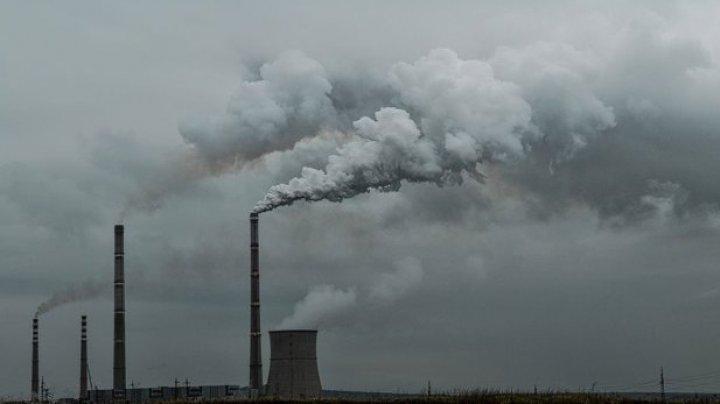 Oamenii de ştiinţă au creat un material care transformă dioxidul de carbon în materie organică