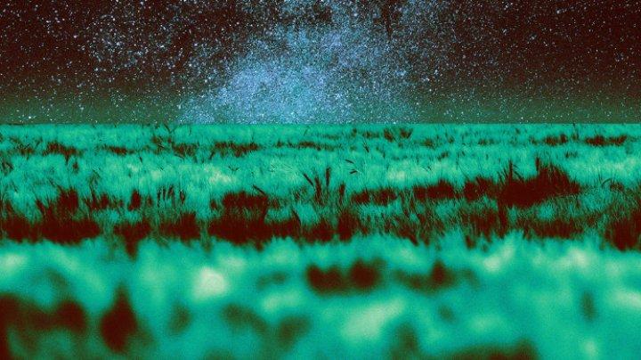 Agricultură în spaţiu. Solul de pe Marte şi de pe Lună se dovedeşte a fi fertil