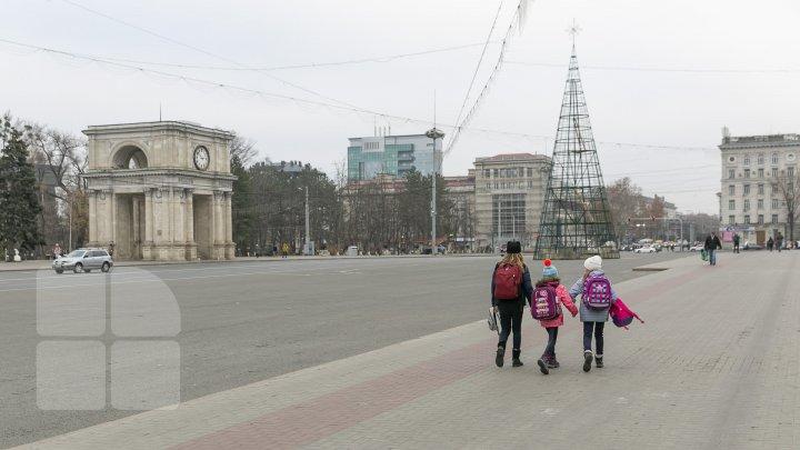 Chişinăul se pregăteşte de sărbătorile de iarnă. Muncitorii au instalat Pomul de Crăciun în PMAN (FOTOREPORT)