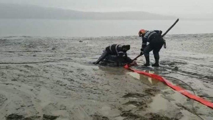S-a afundat în solul mlăștinos şi i se vedea doar capul. Pompierii au intervenit şi l-au salvat (FOTO)
