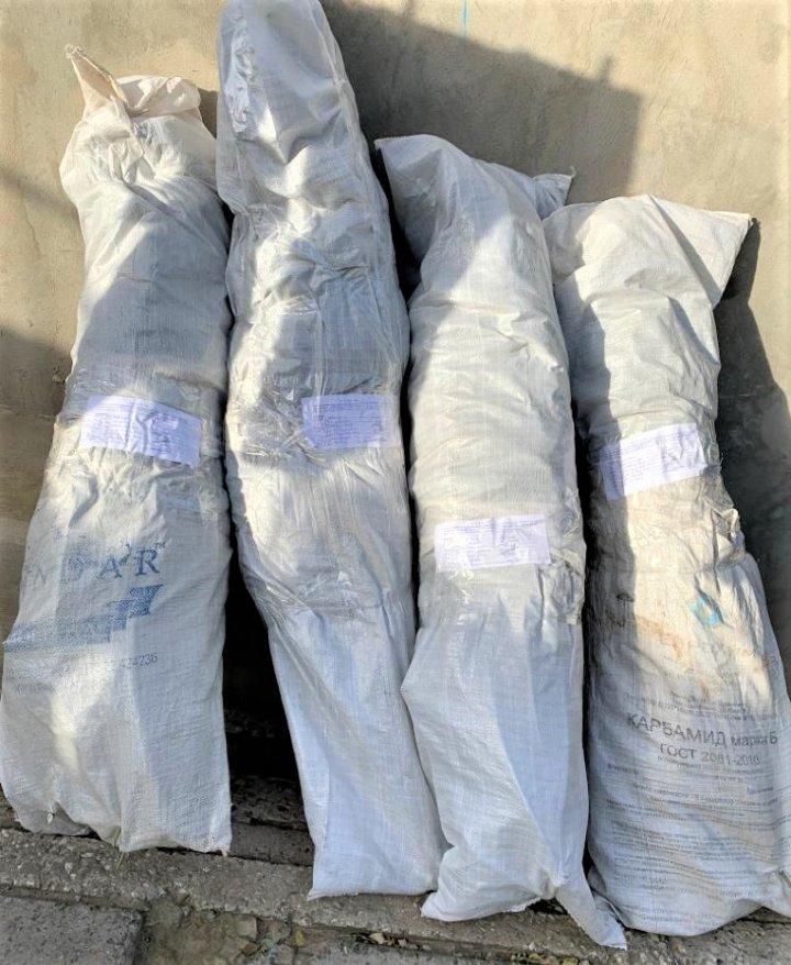 Opt kilograme de marijuana în valoare de 300 DE MII de lei, depistate de oamenii legii la Cahul (FOTO)