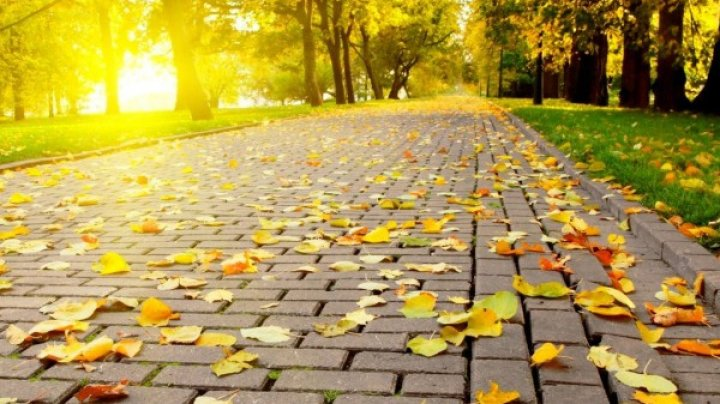 Meteorologii avertizează: În noiembrie am avut temperaturi anormale, semnalate o dată la 30 de ani