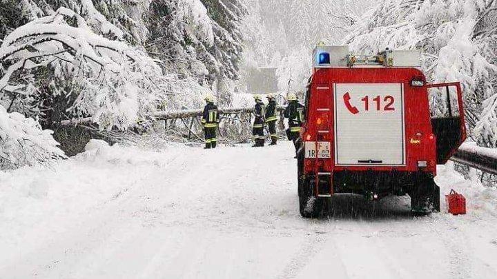 NINGE ABUNDENT în Italia. Drumuri blocate şi copaci prăbuşiţi (VIDEO/FOTO)
