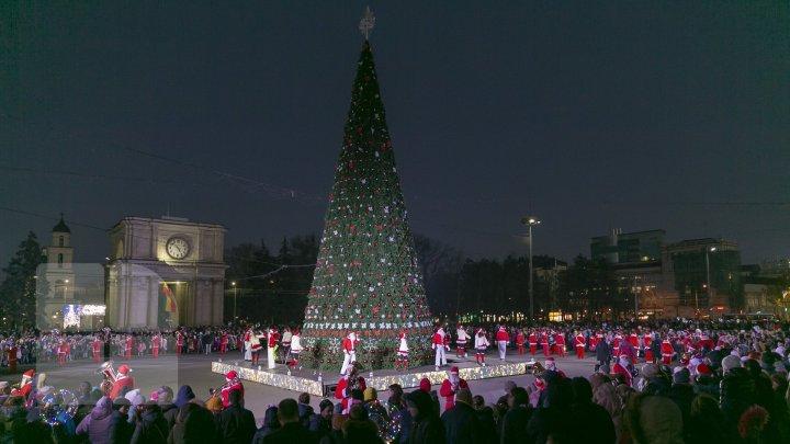 Mai mulţi deputaţi nu vor pleca peste hotare de Revelion şi Crăciun. Cum vor sărbători