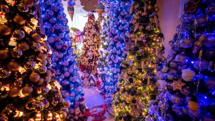 UNUL E PREA PUŢIN. Un cuplu şi-a decorat casa cu 350 de pomi de Crăciun (VIDEO)