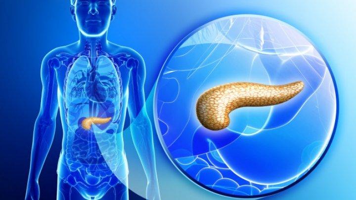 paraziti u organizmu lecenje cât de repede funcționează pastilele de vierme