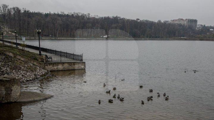 Vremea rece şi ploile vor pune stăpânire pe Moldova. Câte grade vor indica termometrele în următoarele zile