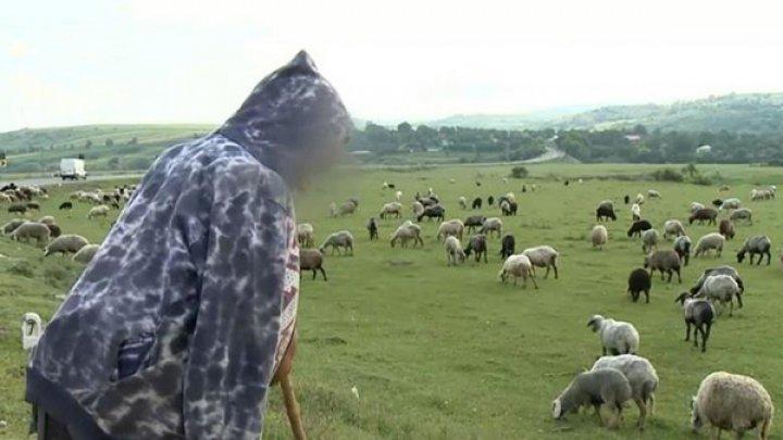 REVOLTĂTOR! Un băiat de 13 ani, vândut ca slugă unui cioban, pentru o capră și câțiva lei