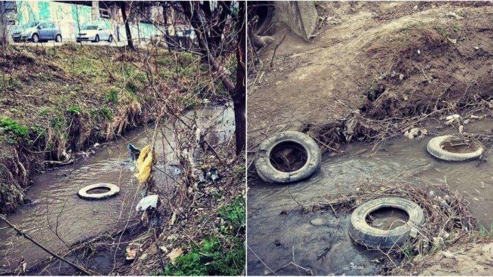 Nu le pasă de sănătatea oamenilor. Mai multe persoane din Capitală şi-au conectat canalizarea fecaloidă la râul Bâc