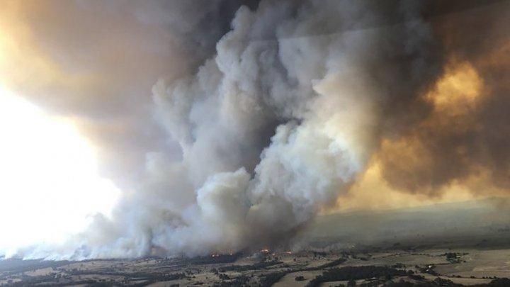 Aerul din Melbourne, cel mai greu de respirat din lume, din cauza fumului provenit de la incendiile de vegetaţie