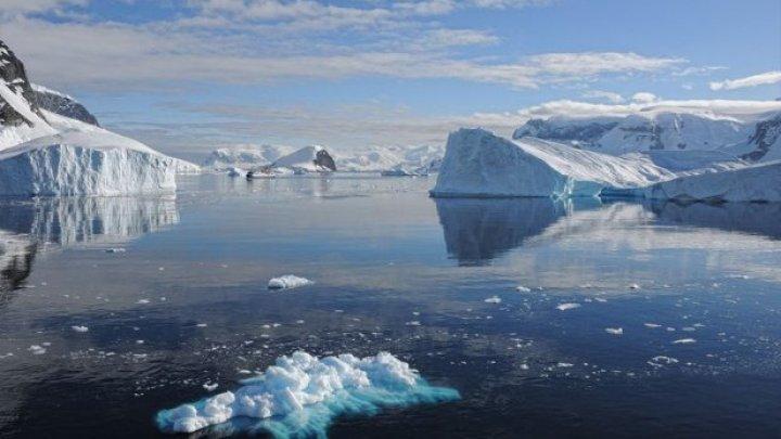 Studiu: Apele din jurul Antarcticii sunt mai acide şi au nivel scăzut de oxigen