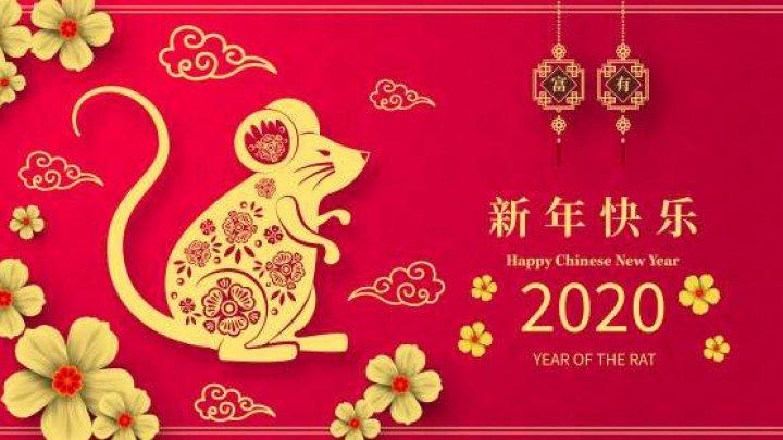 Ce trebuie să faci până pe 26 ianuarie, dacă vrei să ai noroc uriaș tot anul!