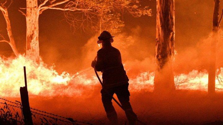 Leonardo DiCaprio va dona 3 milioane de dolari pentru lupta împotriva incendiilor devastatoare din Australia