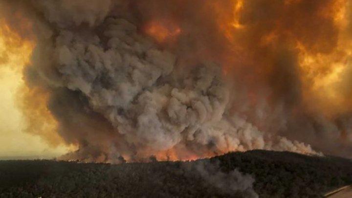IADUL din Australia. Fumul de la incendii a ajuns până în Brazilia