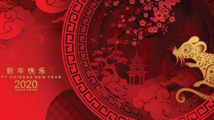 Horoscop chinezesc 2020: Anul Șobolanului de Metal aduce noi începuturi