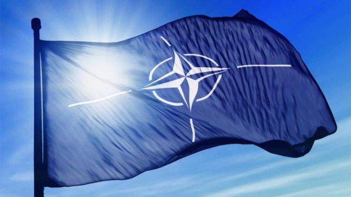 NATO interceptează avioane de război ruseşti într-un nivel neobişnuit al activităţii aeriene